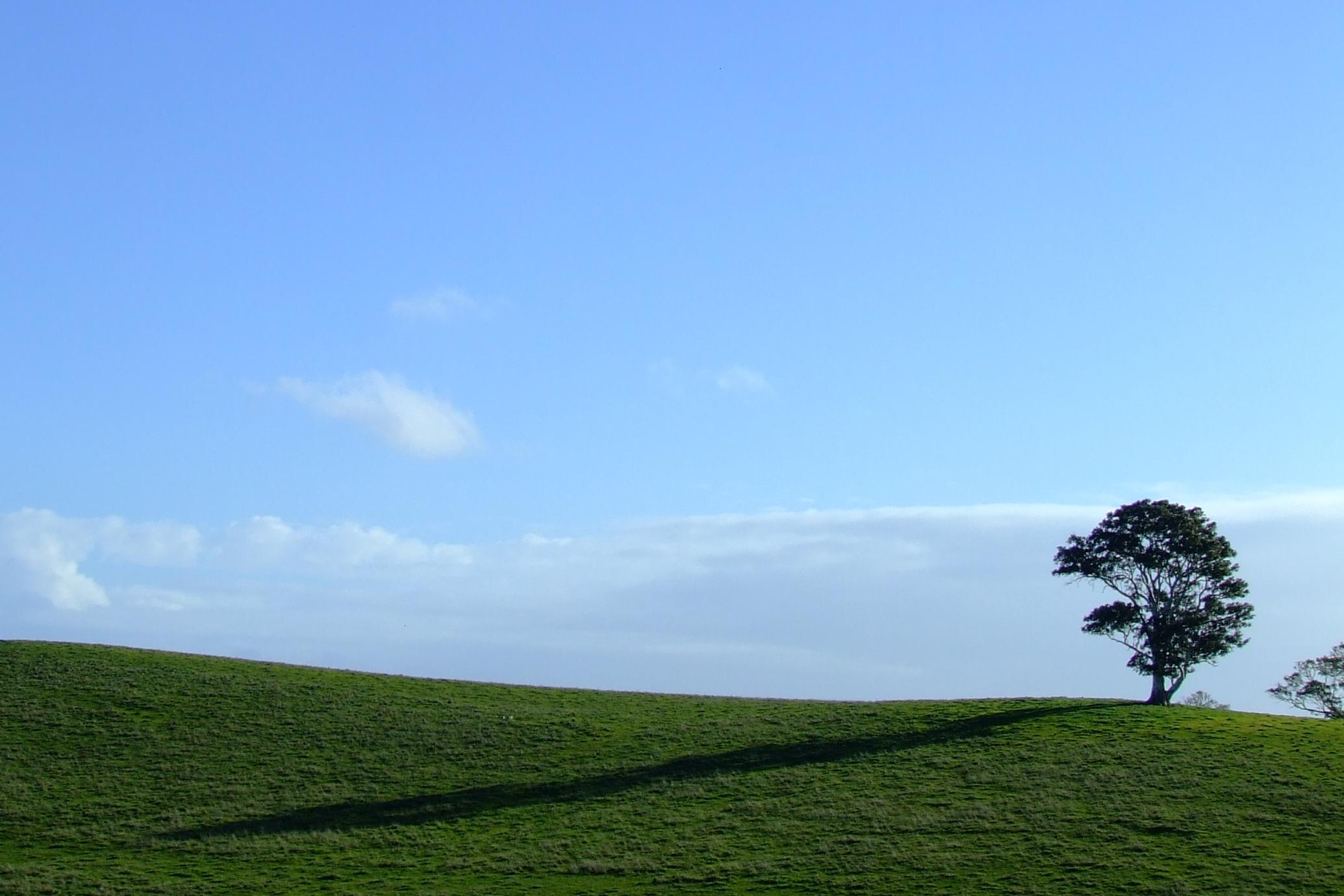 Thom Sullivan Poet Poetry Wistow Bugle Ranges