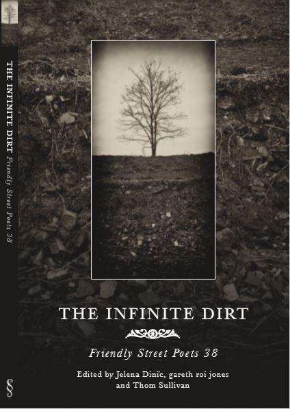 Infinite Dirt